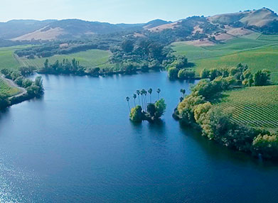 Acacia winery lake