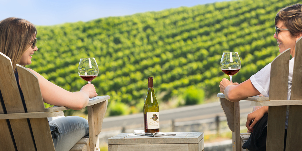 Two people sit holding wine glasses in front of view of vineyard on a hillside